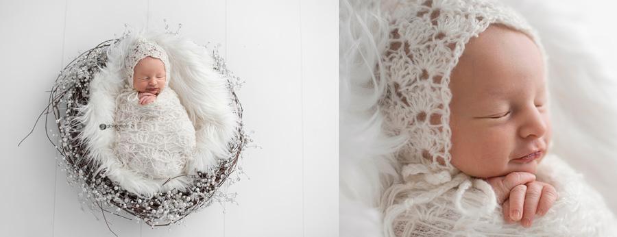 newborn in white nest
